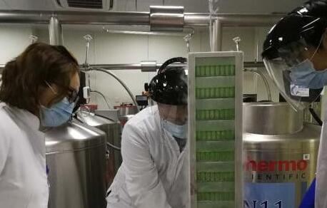 同济大学左为教授利用干细胞移植技术实现人类肺脏再生